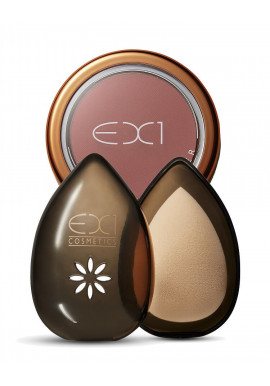 EX1 The Beauty Egg + Blusher