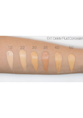 EX1 Delete Fluid Concealer Duo Swatches